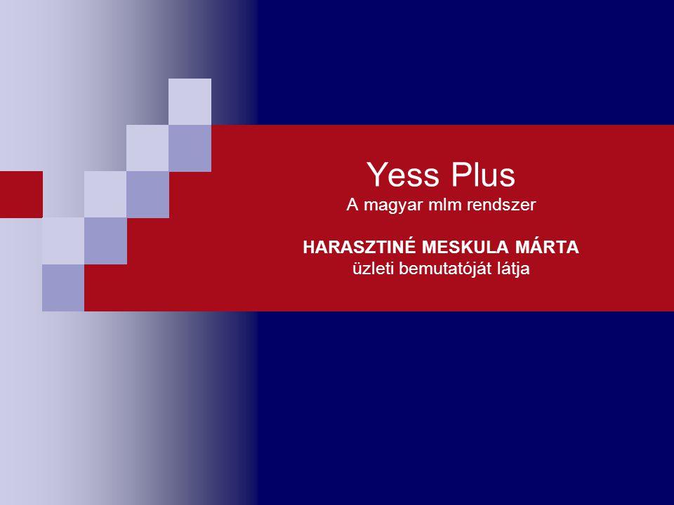 Yess Plus A magyar mlm rendszer HARASZTINÉ MESKULA MÁRTA üzleti bemutatóját látja