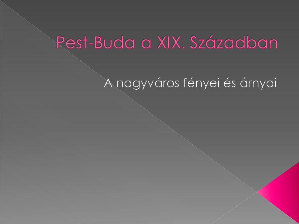 Pest-Buda a XIX. Században
