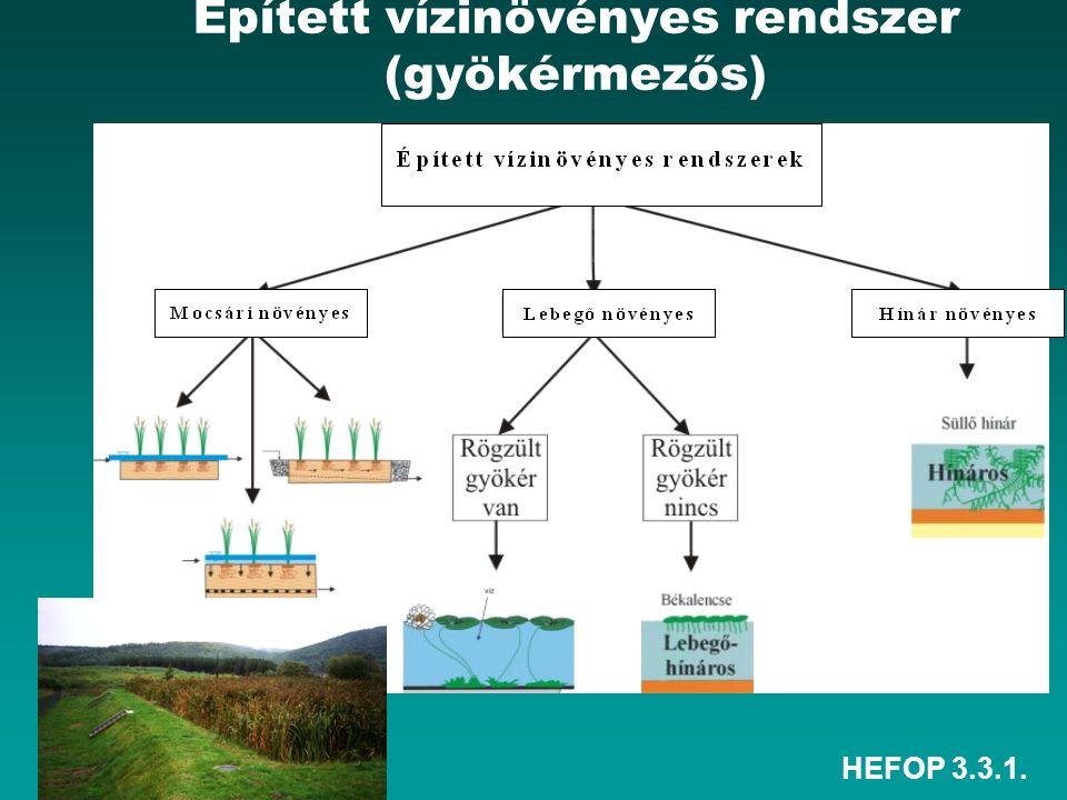 Épített vízinövényes rendszer (gyökérmezős)