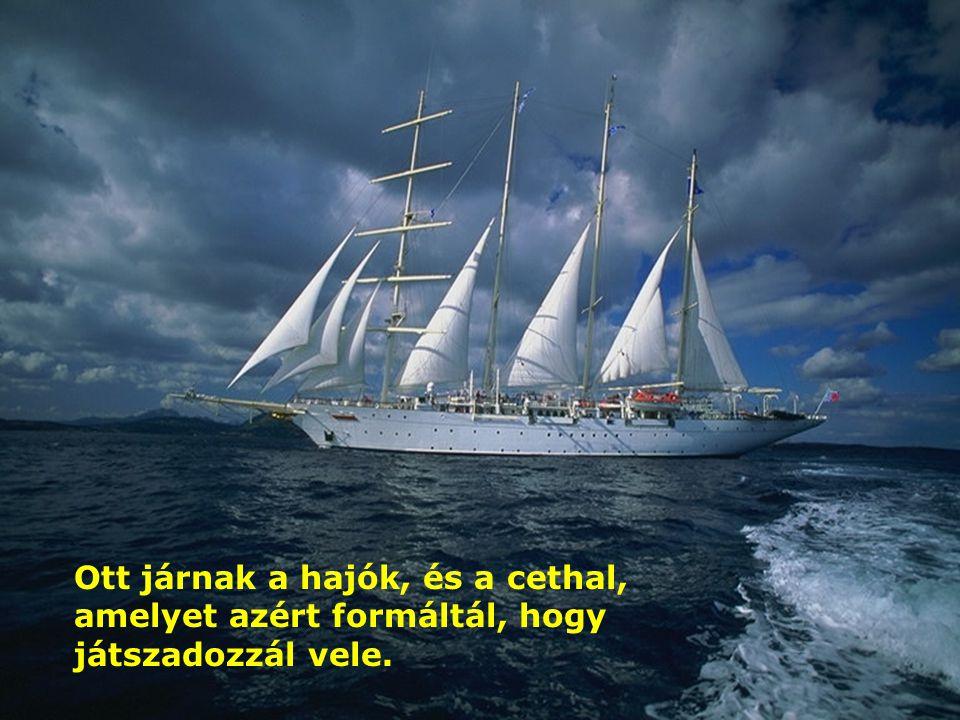Ott járnak a hajók, és a cethal, amelyet azért formáltál, hogy játszadozzál vele.