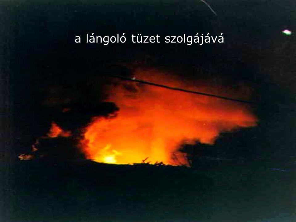 a lángoló tüzet szolgájává