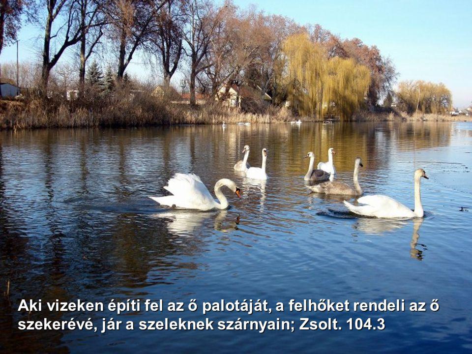 Aki vizeken építi fel az ő palotáját, a felhőket rendeli az ő szekerévé, jár a szeleknek szárnyain; Zsolt.