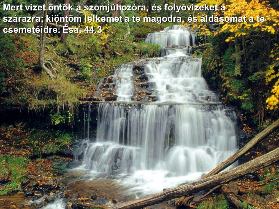 Mert vizet öntök a szomjúhozóra, és folyóvizeket a szárazra; kiöntöm lelkemet a te magodra, és áldásomat a te csemetéidre.