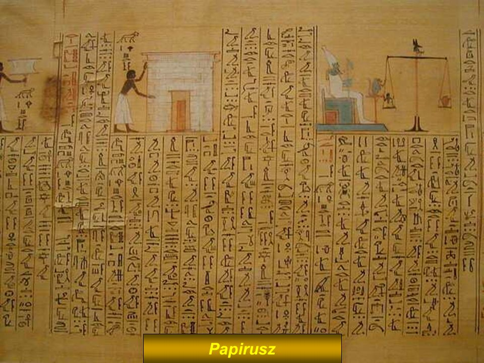 Papyrus Papirusz