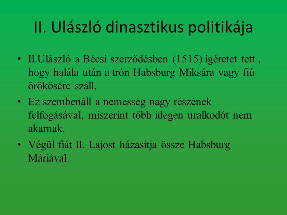 II. Ulászló dinasztikus politikája