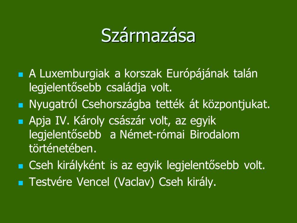 Származása A Luxemburgiak a korszak Európájának talán legjelentősebb családja volt. Nyugatról Csehországba tették át központjukat.