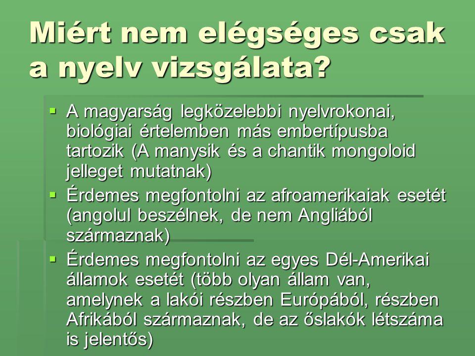 Miért nem elégséges csak a nyelv vizsgálata