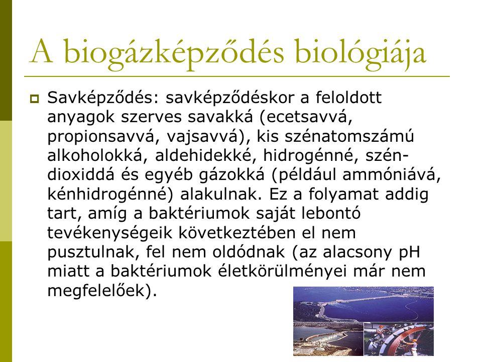 A biogázképződés biológiája