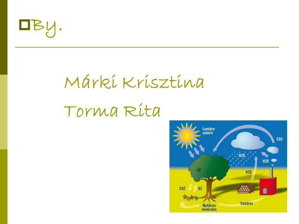 By. Márki Krisztina Torma Rita