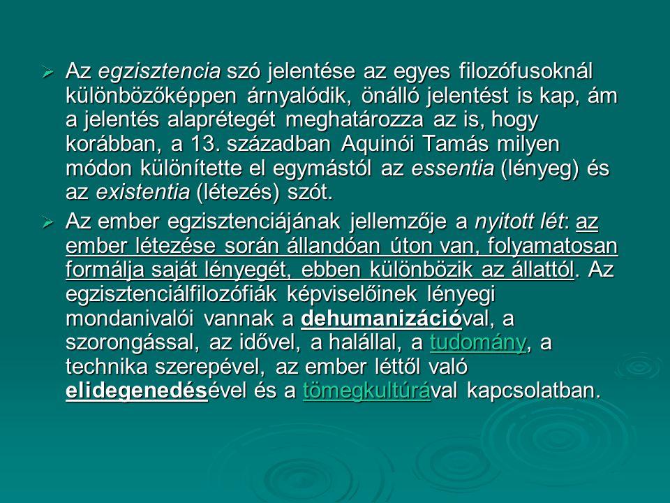 Az egzisztencia szó jelentése az egyes filozófusoknál különbözőképpen árnyalódik, önálló jelentést is kap, ám a jelentés alaprétegét meghatározza az is, hogy korábban, a 13. században Aquinói Tamás milyen módon különítette el egymástól az essentia (lényeg) és az existentia (létezés) szót.