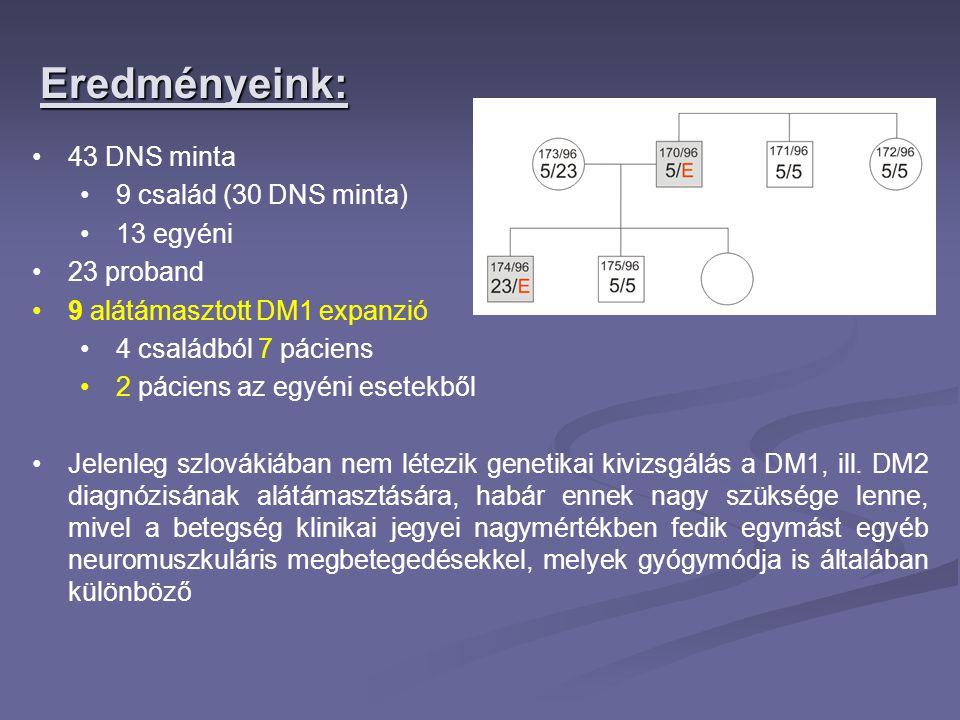 Eredményeink: 43 DNS minta 9 család (30 DNS minta) 13 egyéni