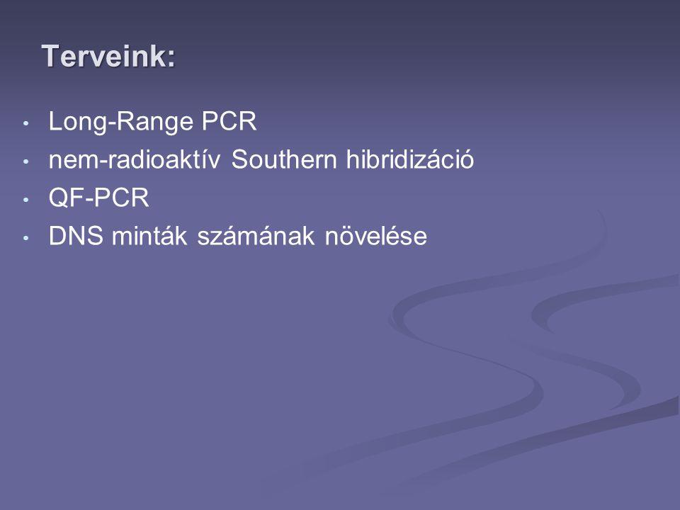 Terveink: Long-Range PCR nem-radioaktív Southern hibridizáció QF-PCR
