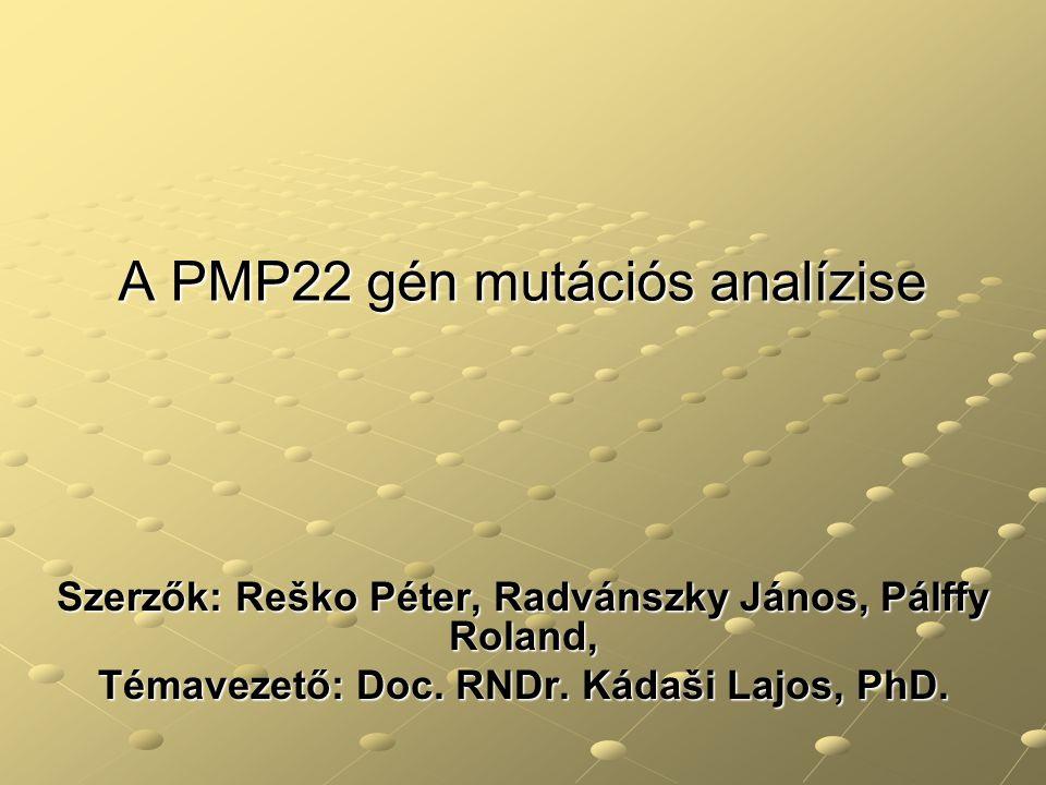 A PMP22 gén mutációs analízise