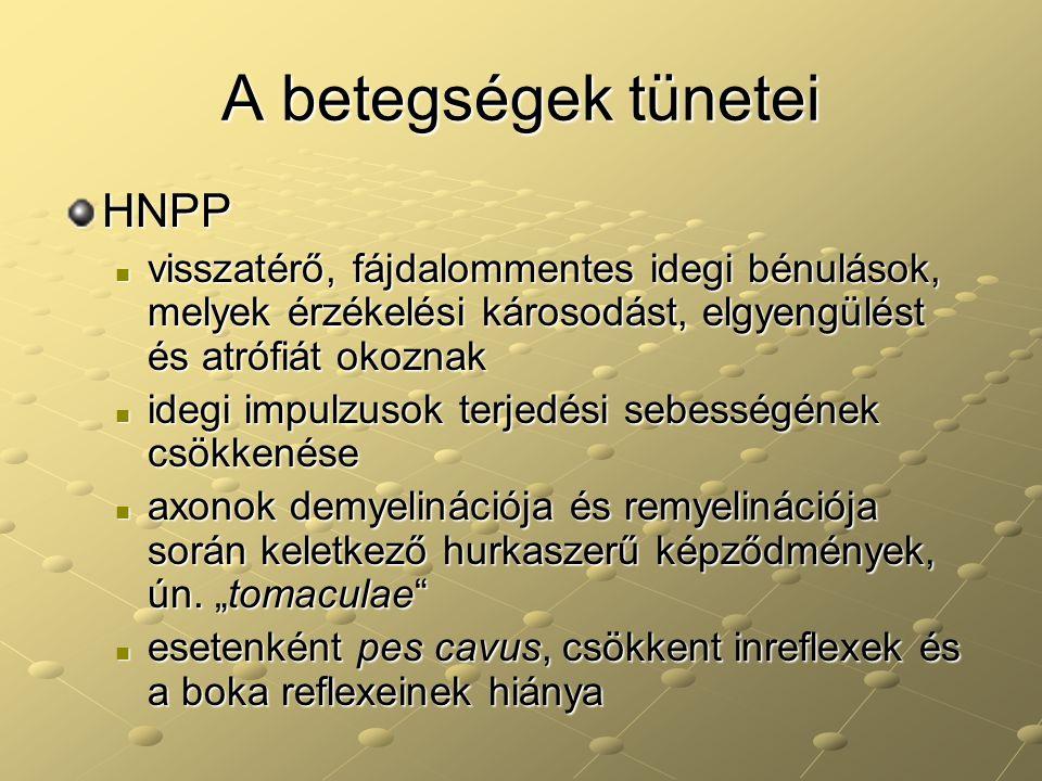 A betegségek tünetei HNPP