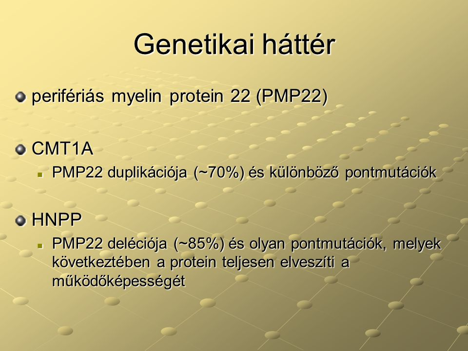 Genetikai háttér perifériás myelin protein 22 (PMP22) CMT1A HNPP