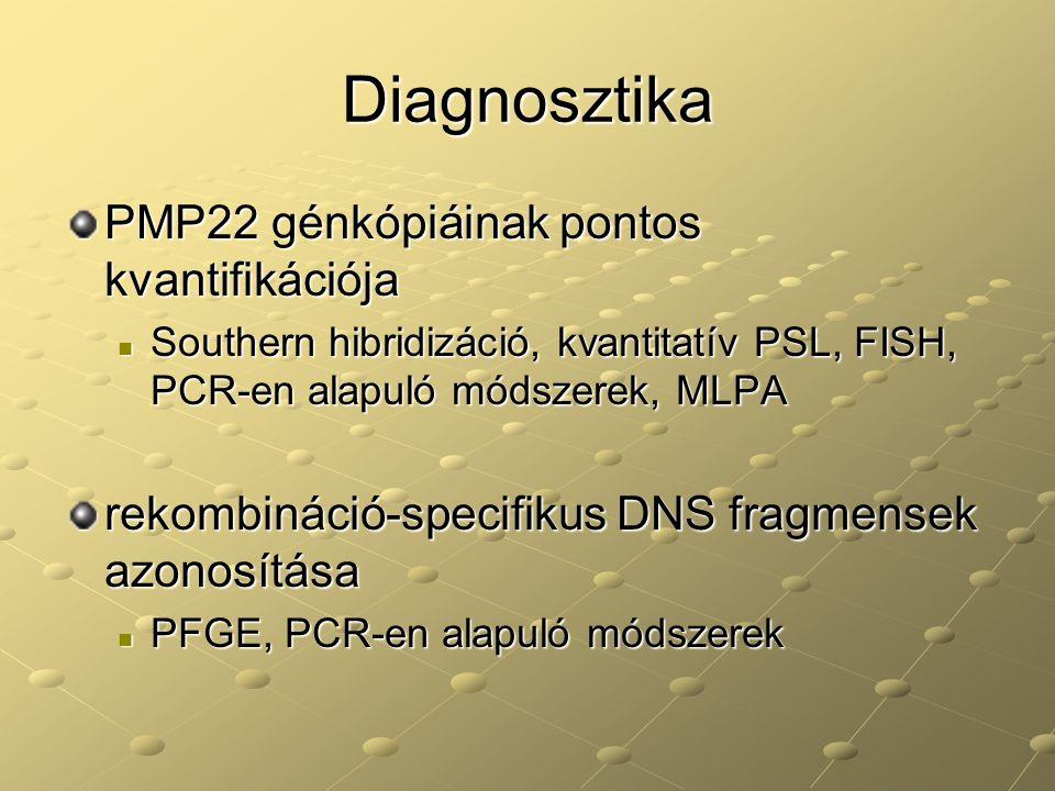 Diagnosztika PMP22 génkópiáinak pontos kvantifikációja