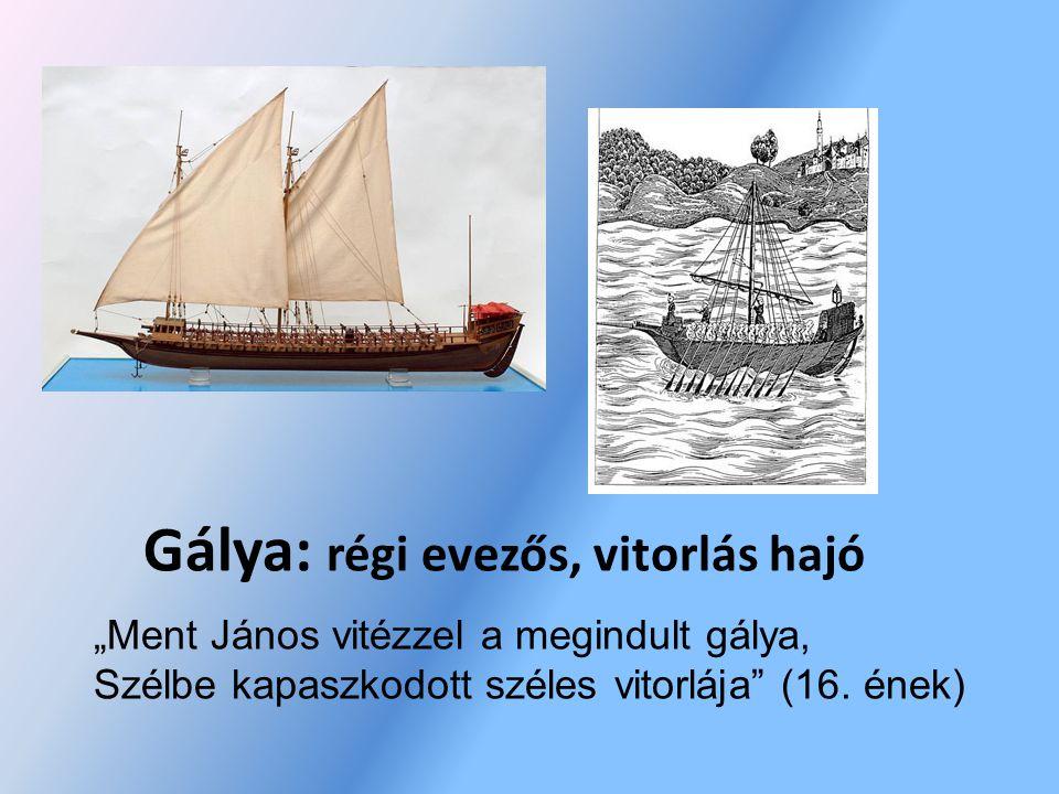 Gálya: régi evezős, vitorlás hajó