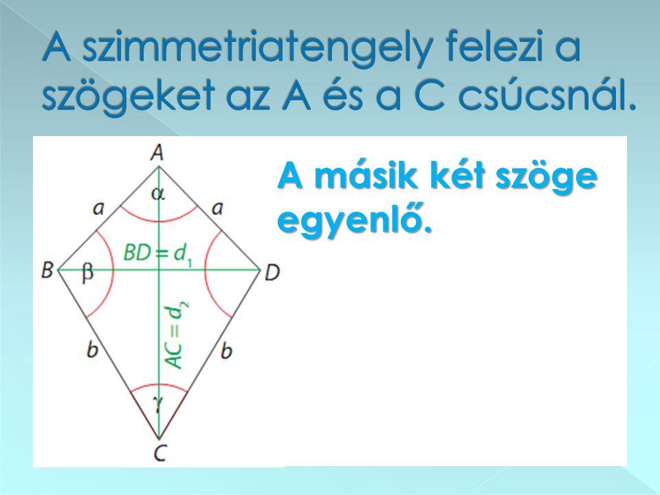 A szimmetriatengely felezi a szögeket az A és a C csúcsnál.