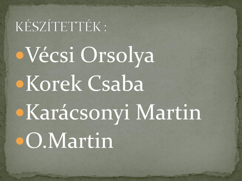 KÉSZÍTETTÉK : Vécsi Orsolya Korek Csaba Karácsonyi Martin O.Martin