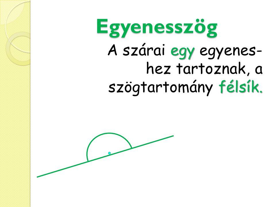 Egyenesszög A szárai egy egyenes- hez tartoznak, a szögtartomány félsík.