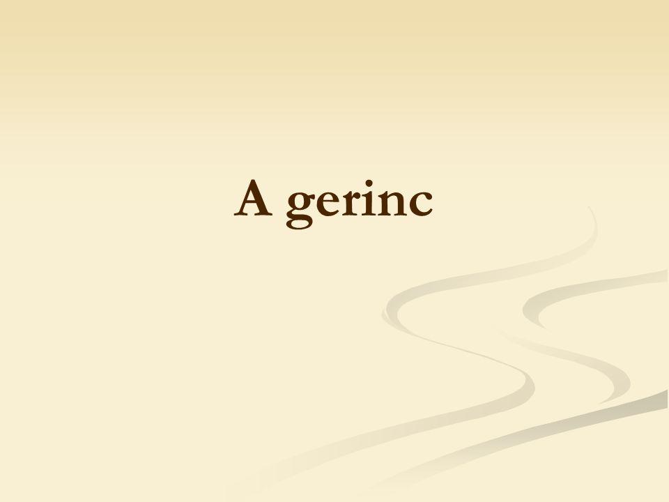 A gerinc