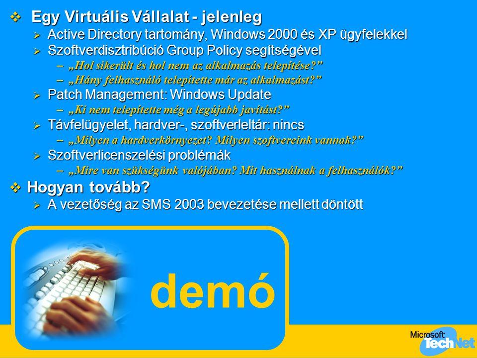 demó Egy Virtuális Vállalat - jelenleg Hogyan tovább