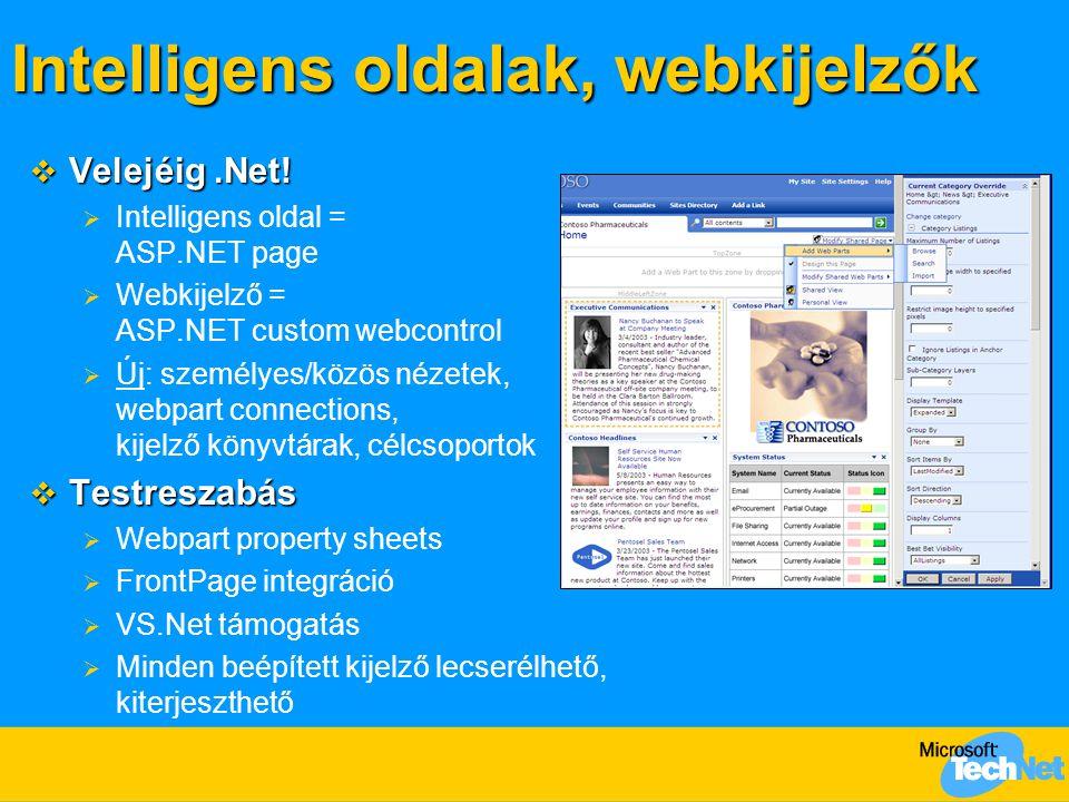 Intelligens oldalak, webkijelzők