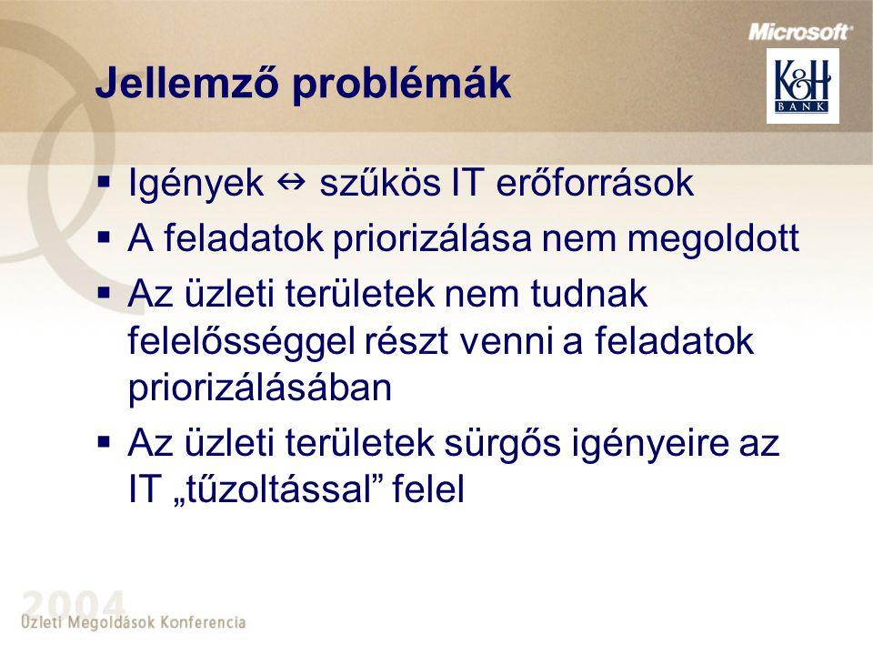Jellemző problémák Igények  szűkös IT erőforrások