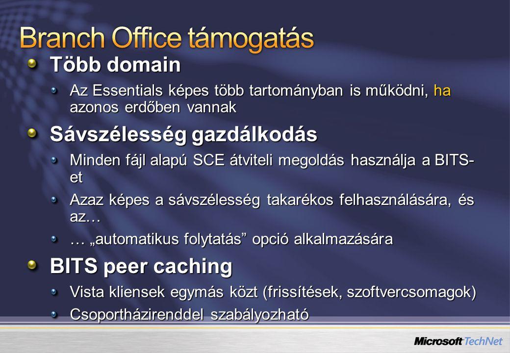 Branch Office támogatás