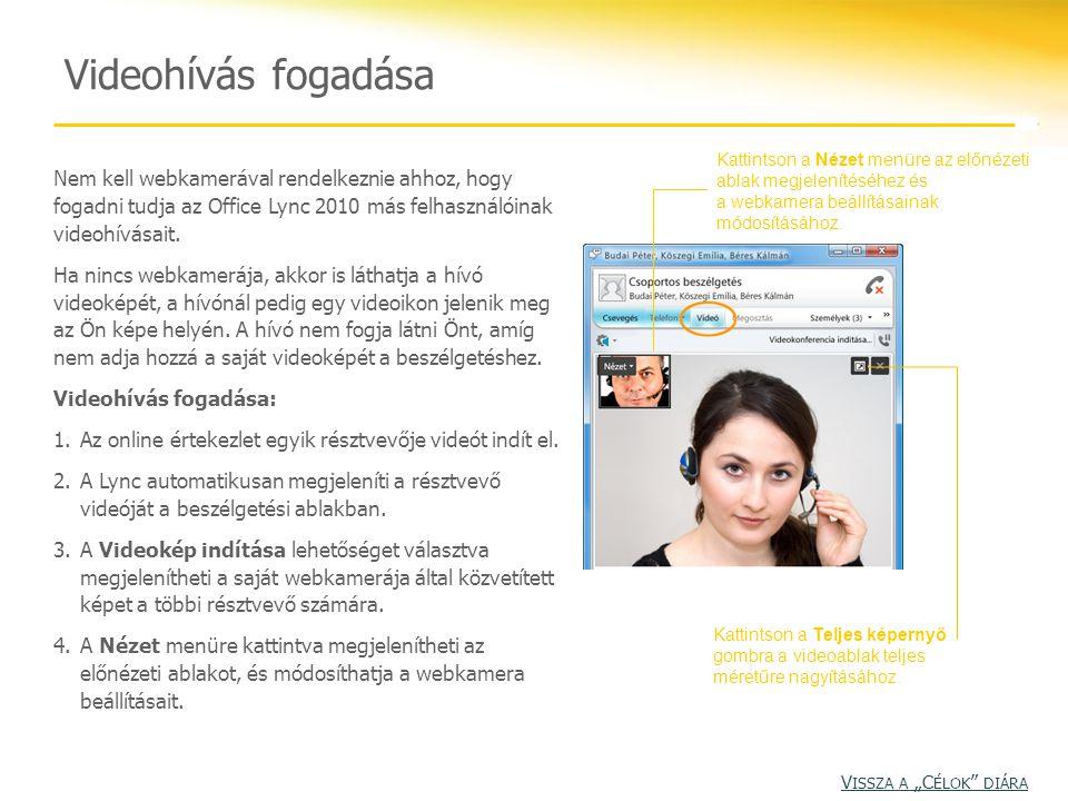 Videohívás fogadása Kattintson a Nézet menüre az előnézeti ablak megjelenítéséhez és a webkamera beállításainak módosításához.