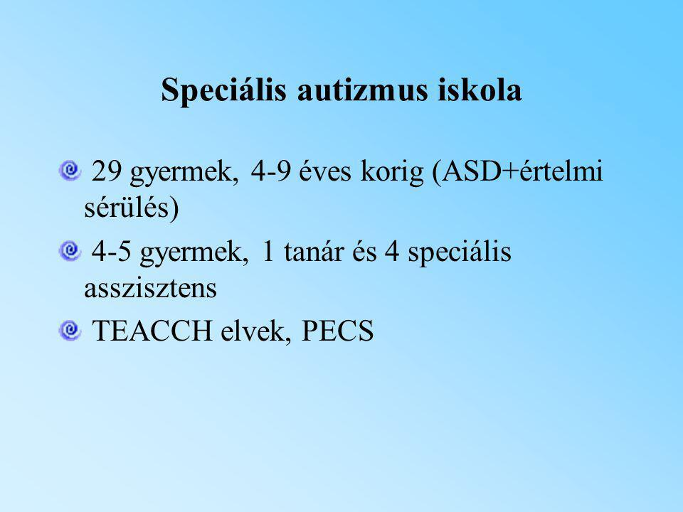 Speciális autizmus iskola