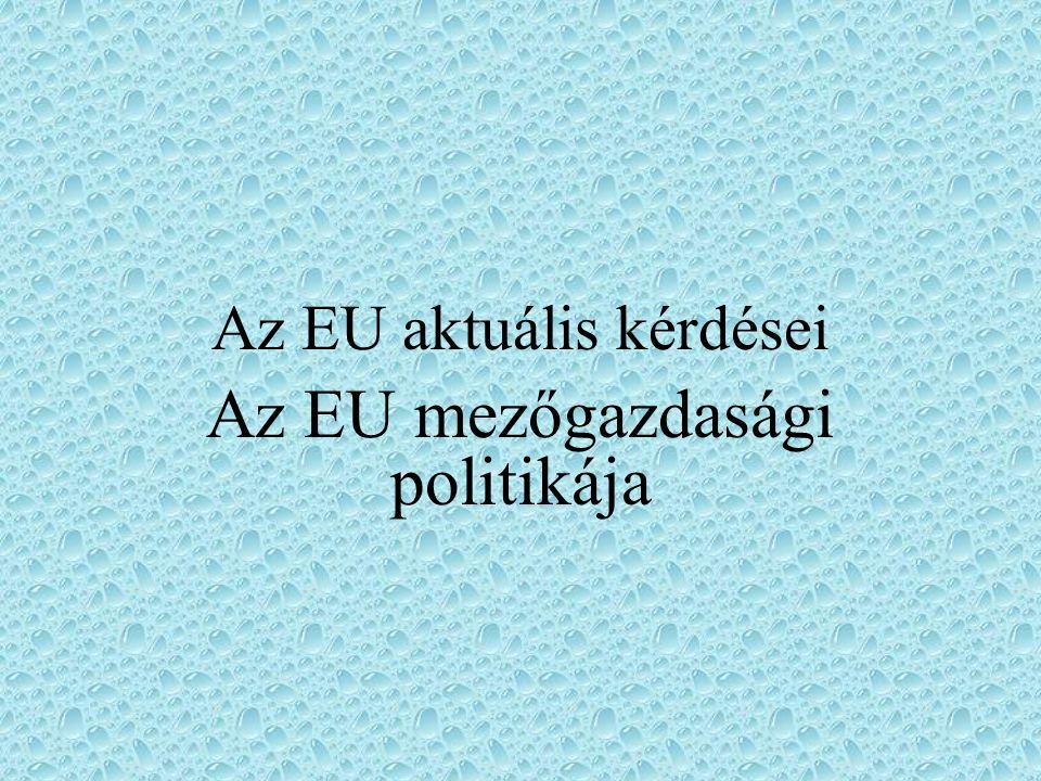 Az EU aktuális kérdései