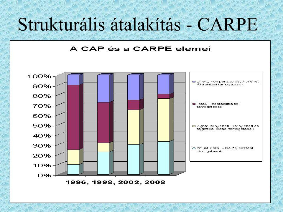 Strukturális átalakítás - CARPE