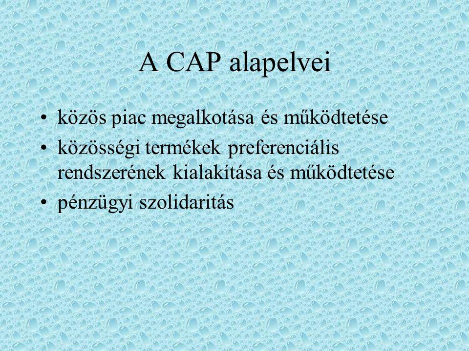 A CAP alapelvei közös piac megalkotása és működtetése