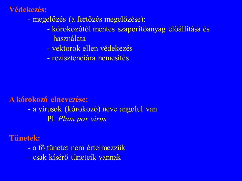 Védekezés: - megelőzés (a fertőzés megelőzése): - kórokozótól mentes szaporítóanyag előállítása és használata.
