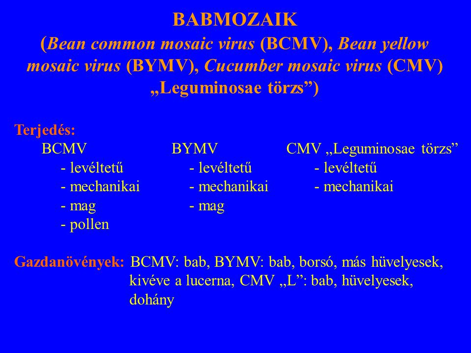 "BABMOZAIK (Bean common mosaic virus (BCMV), Bean yellow mosaic virus (BYMV), Cucumber mosaic virus (CMV) ""Leguminosae törzs )"
