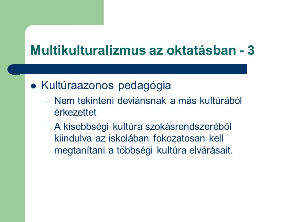 Multikulturalizmus az oktatásban - 3
