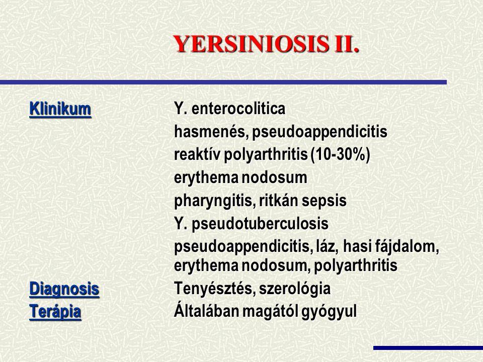 YERSINIOSIS II. Klinikum Y. enterocolitica