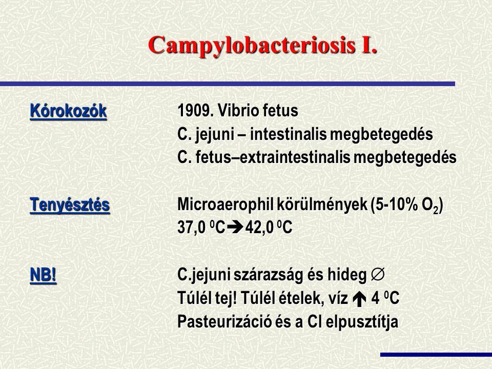 Campylobacteriosis I. Kórokozók 1909. Vibrio fetus