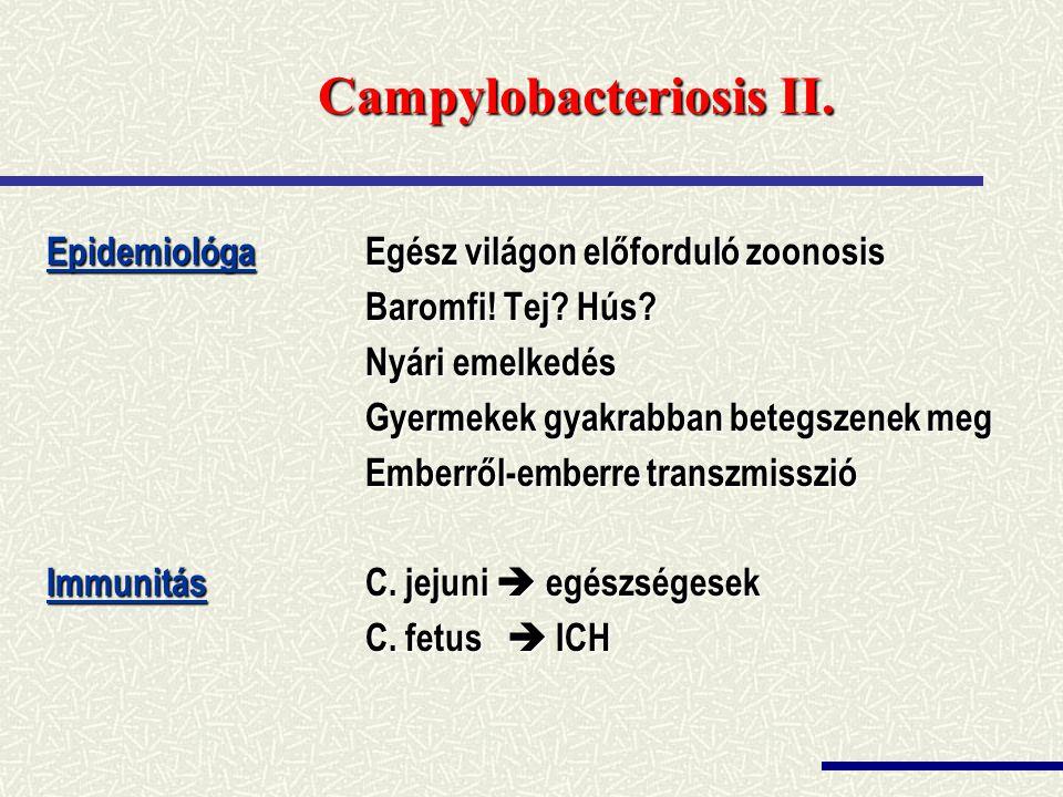 Campylobacteriosis II.