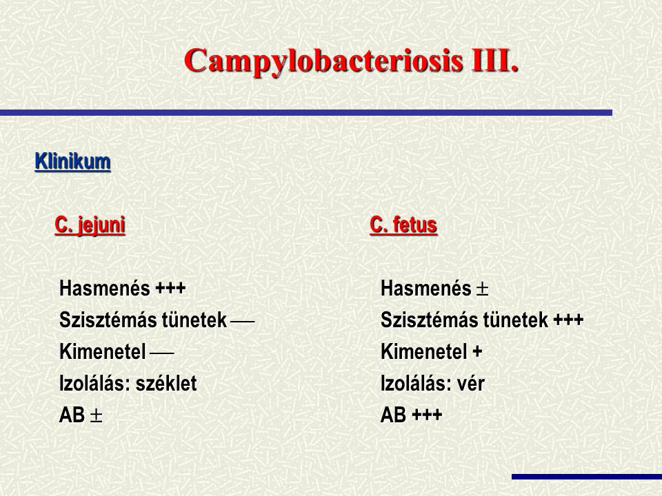 Campylobacteriosis III.