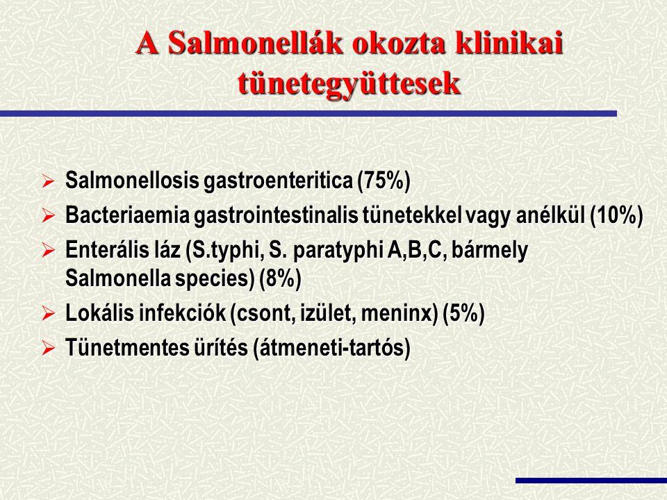 A Salmonellák okozta klinikai tünetegyüttesek