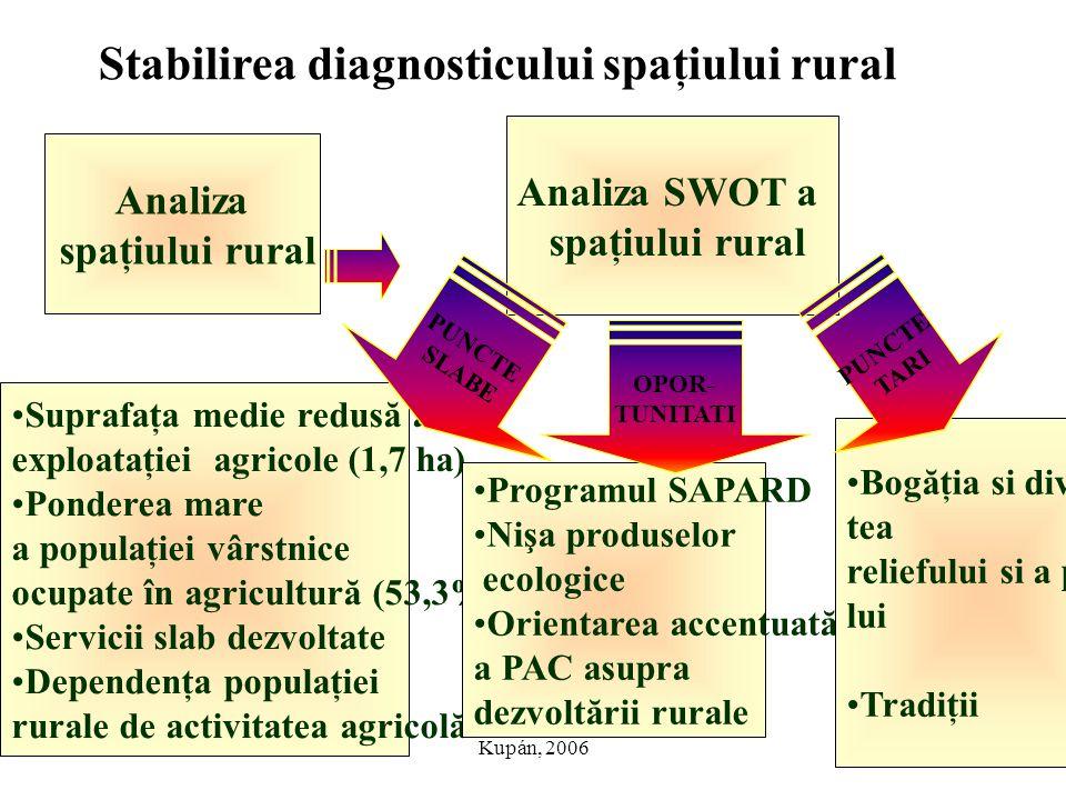 Stabilirea diagnosticului spaţiului rural