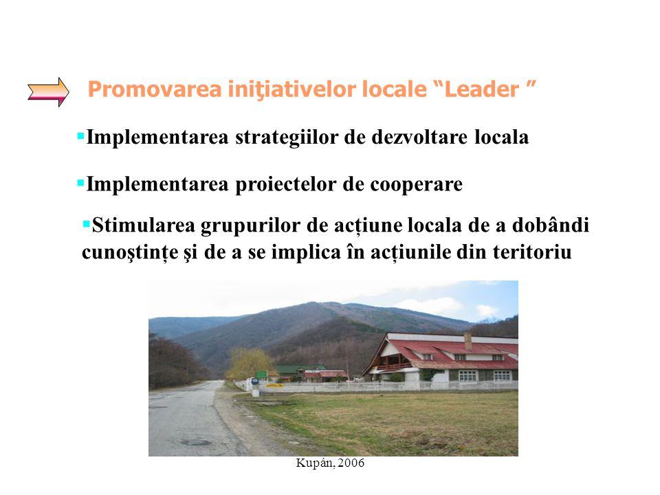Promovarea iniţiativelor locale Leader