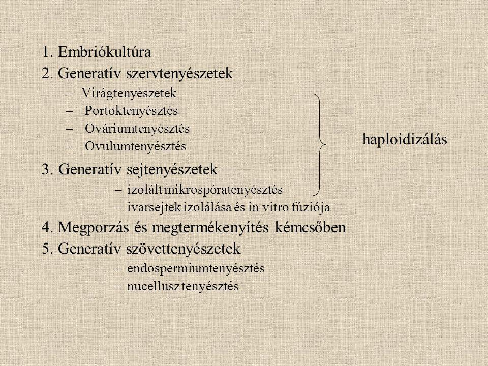 2. Generatív szervtenyészetek