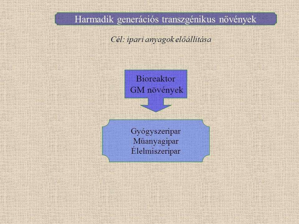 Harmadik generációs transzgénikus növények