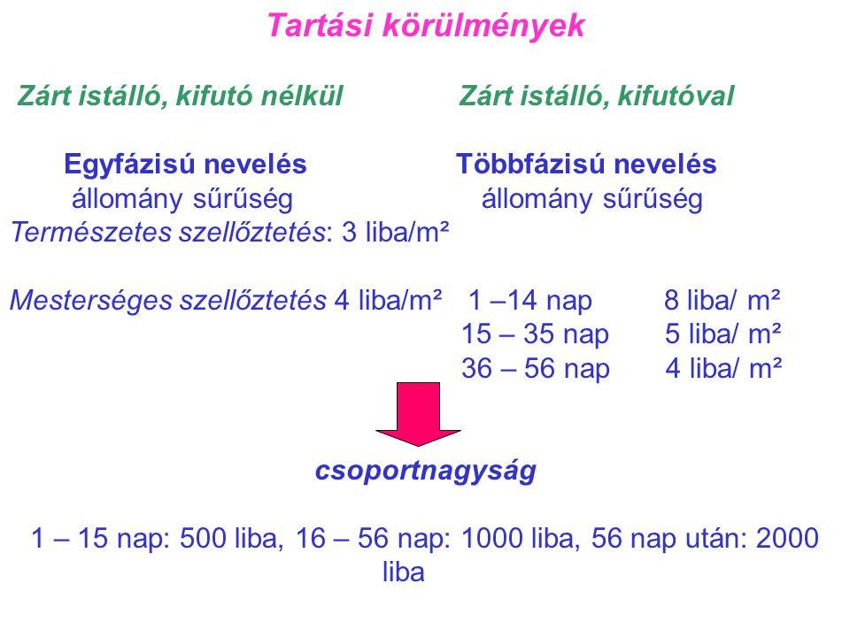 1 – 15 nap: 500 liba, 16 – 56 nap: 1000 liba, 56 nap után: 2000 liba