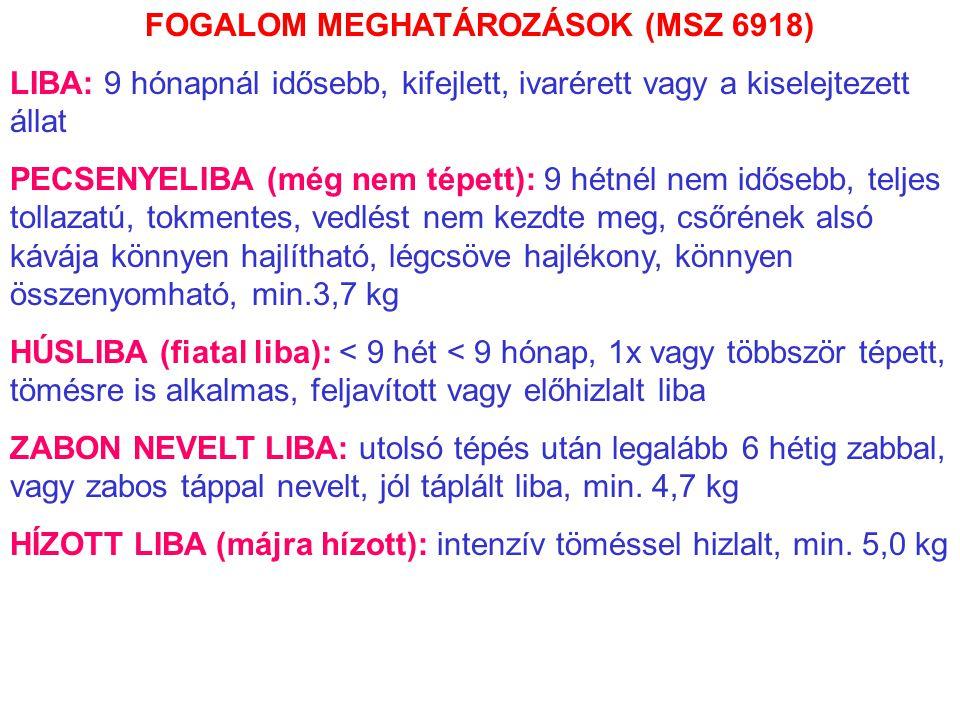 FOGALOM MEGHATÁROZÁSOK (MSZ 6918)