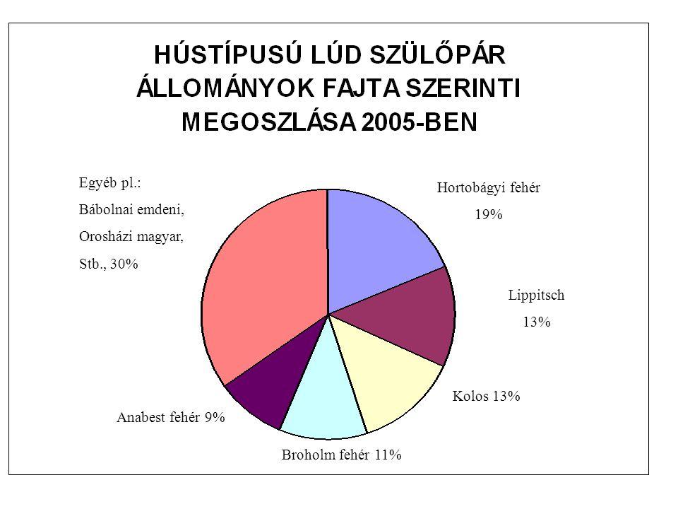 Egyéb pl.: Bábolnai emdeni, Orosházi magyar, Stb., 30% Hortobágyi fehér. 19% Lippitsch. 13% Kolos 13%