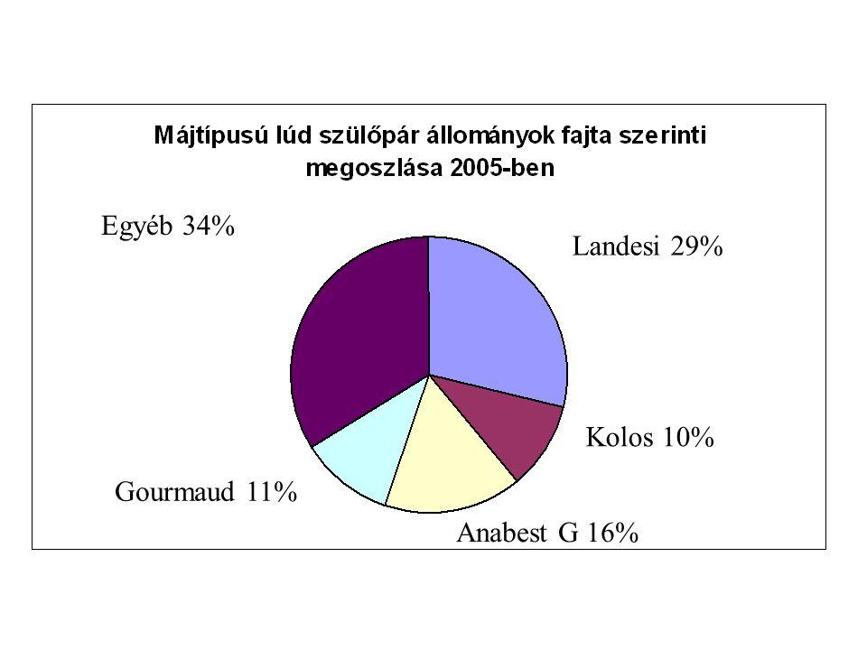 Egyéb 34% Landesi 29% Kolos 10% Gourmaud 11% Anabest G 16%